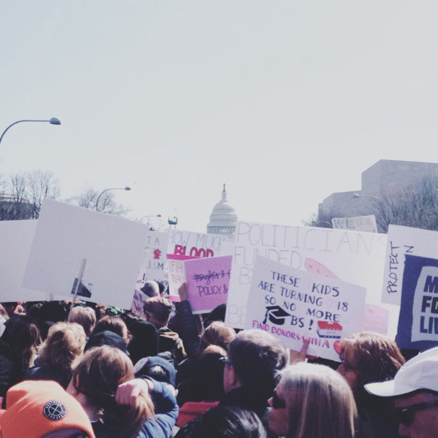 The March For Our Lives in Washington DC
